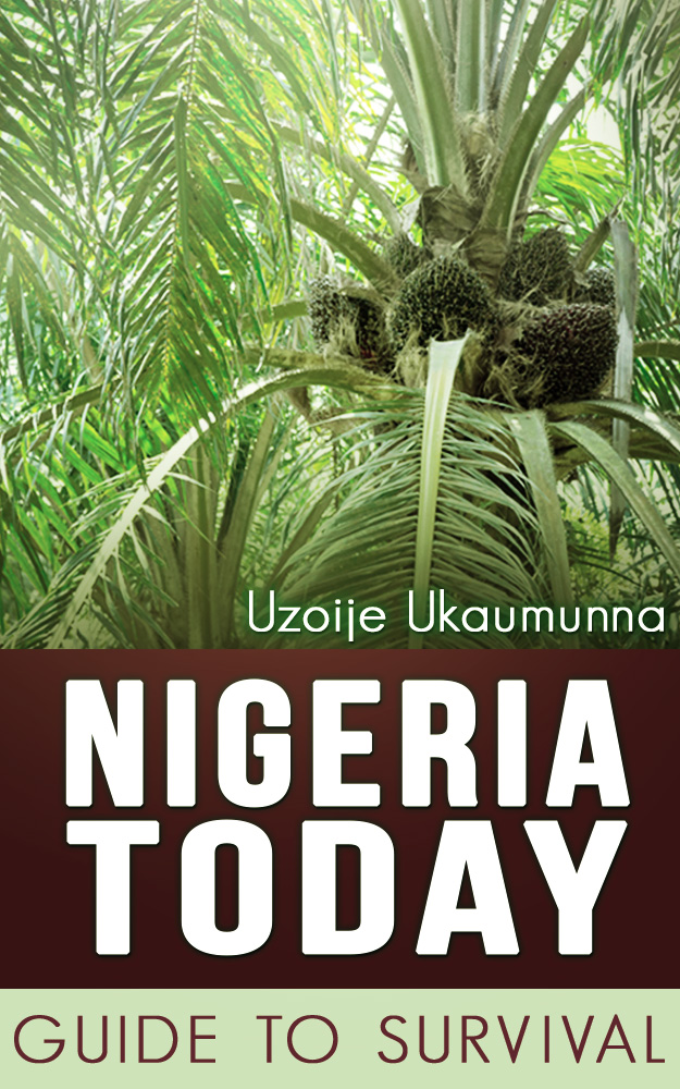 Nigeria_Today_ebook